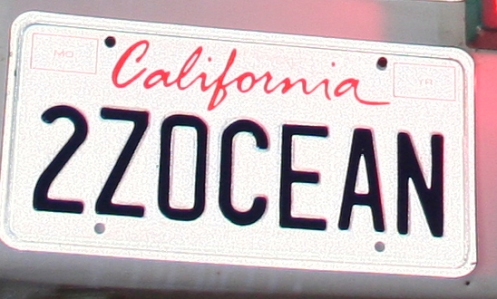 Funny License Plates - Two Zee Ocean